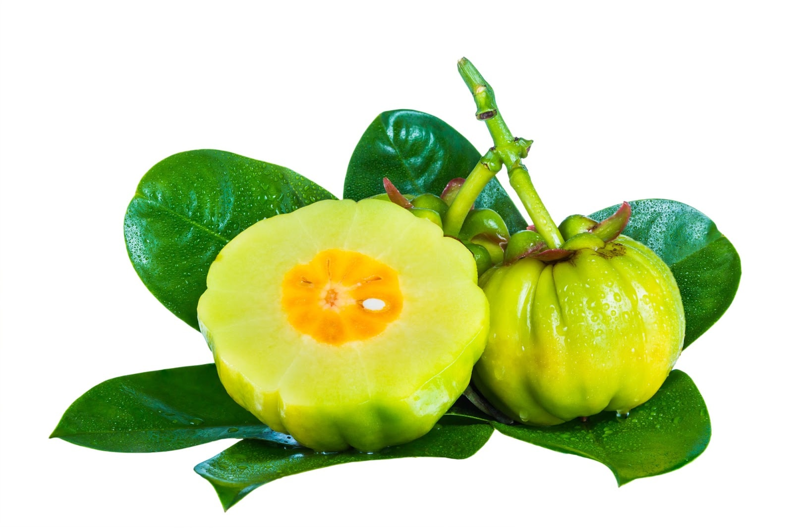 Does Garcinia Cambogia Work? 7 Things You Should Know